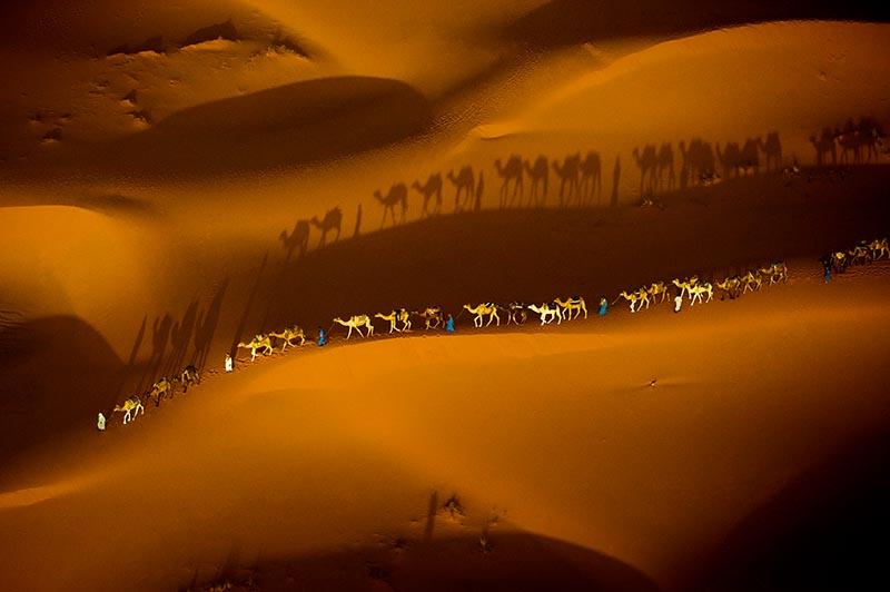 Art Wolfe – Kamelkarawane in der Sahara