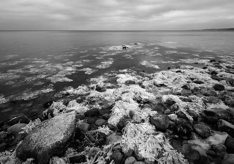 Insel Als/Alsen: Ostseeküste im infraroten Licht